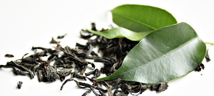 Zelený čaj je základem pro dobrý stav imunitního systému