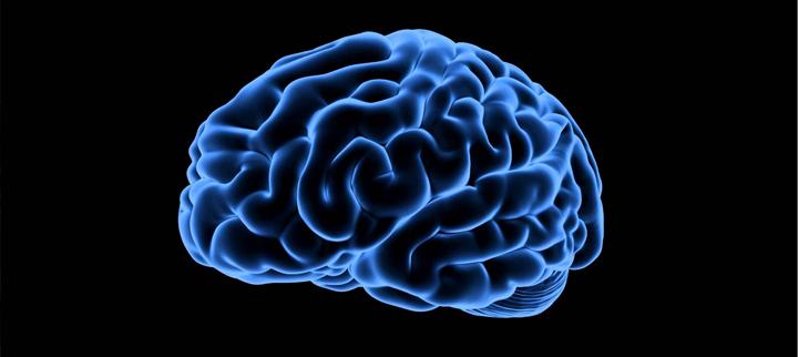 Červená řepa zlepšuje činnost mozku