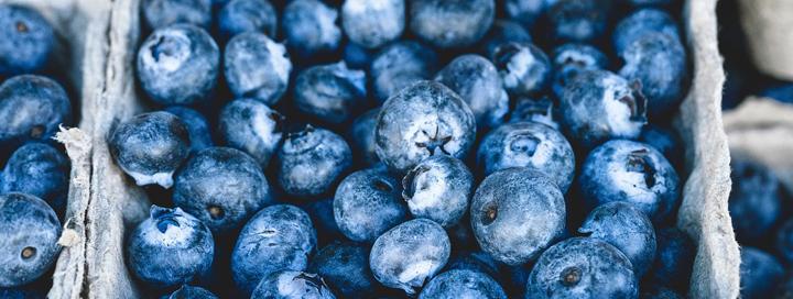 Další velkou výhodou borůvek je obsah kalorií