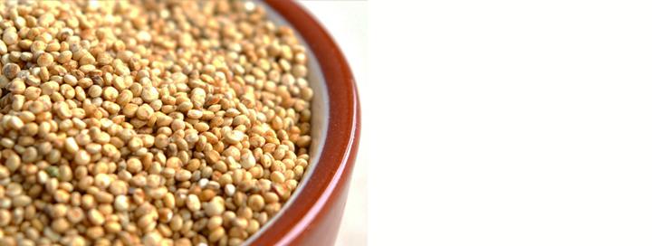 Quinoa má vysoce kvalitní sacharidy
