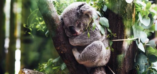Spokojený spánek začíná u dodržování těchto pravidel!